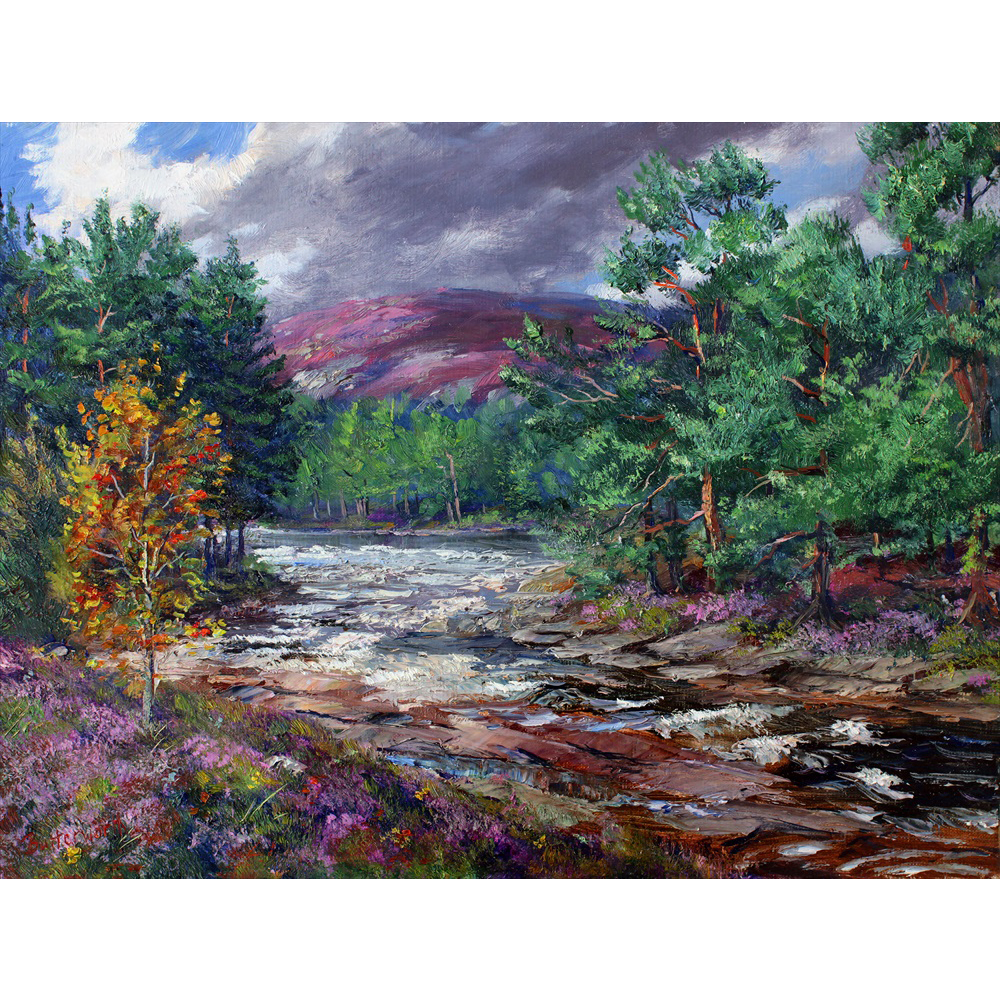 "Royal Deeside at it's best. The River Dee "" Water of Life"" with heather banks and Pine Trees."